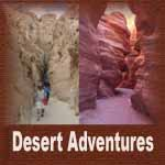 Desert_Tours_Eilat