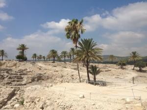 Megiddo 006