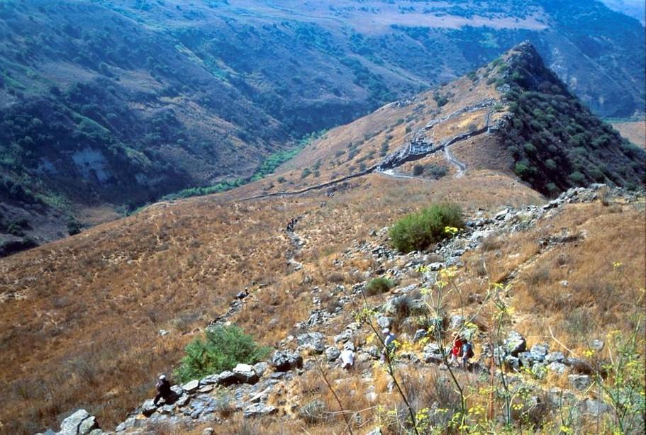 Golan tours