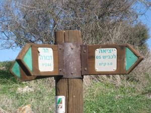 Gospel Trail 19