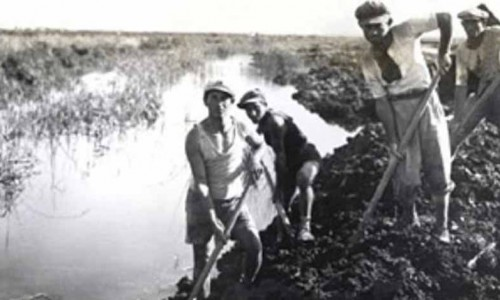 Development of the GALILEE was RE-SPARKED by JEWISH PIONEER SPIRIT , at the turn of the 20th century. Malaria infected swamps were drained and turned into prime agricultural land. The era brought with it a pride and the beginnings of modern Israeli heroism