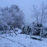 Parod Snow